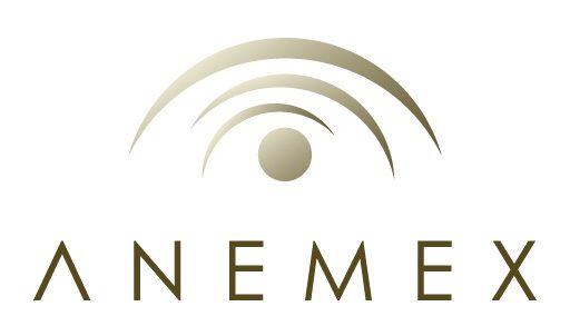 Bienvenido al Blog de ANEMEX